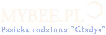 """MyBee.pl - rodzinna pasieka """"Gładys"""""""